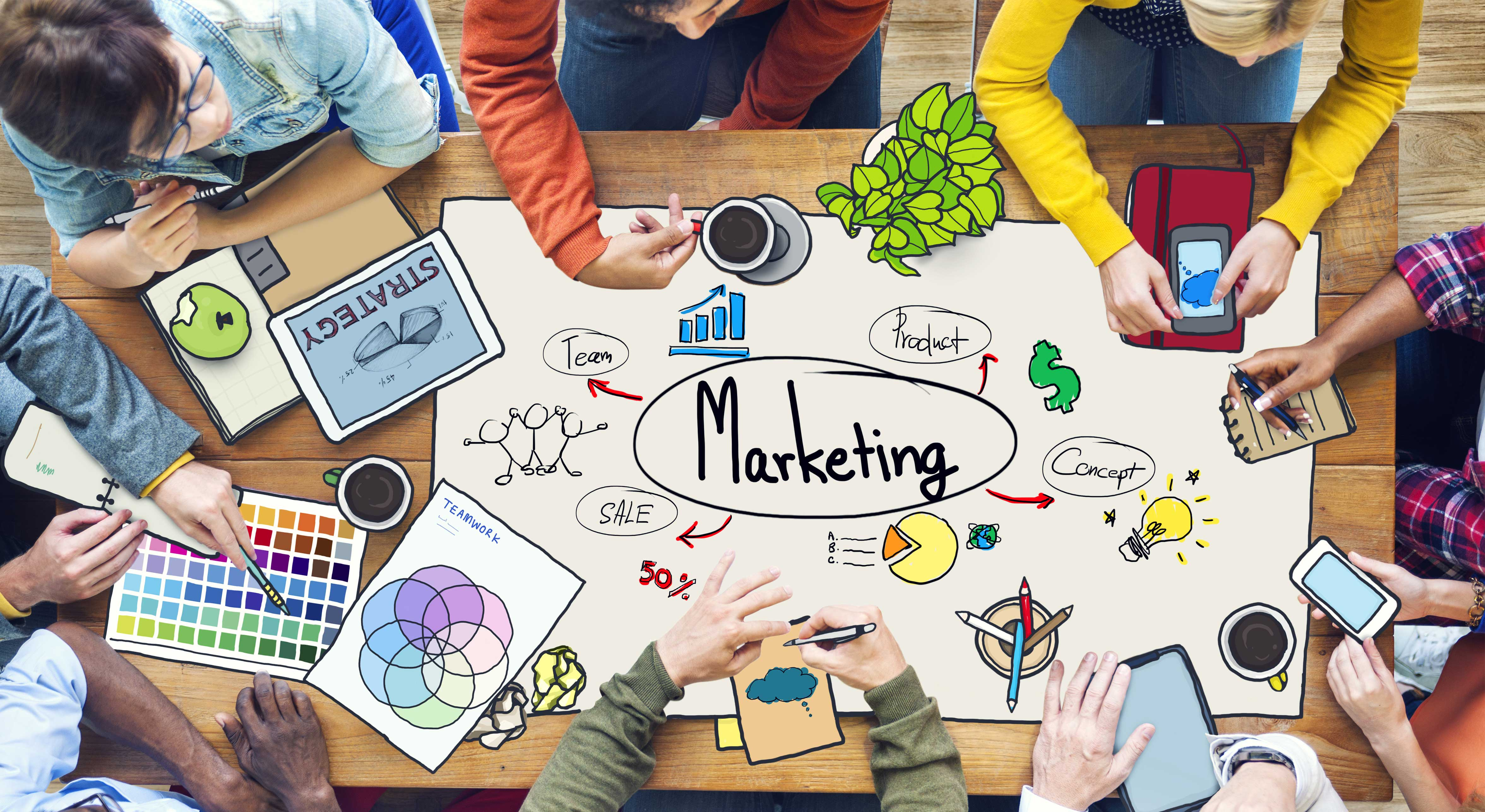 restaurant feasibility study technical marketing socio economic management financial