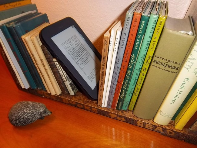 5 Reasons Book Lovers Prefer To Rent Books 2
