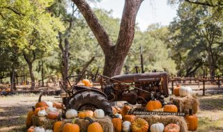 How to Start Preparing Your Fall Seasonal Attraction Now 7jpg