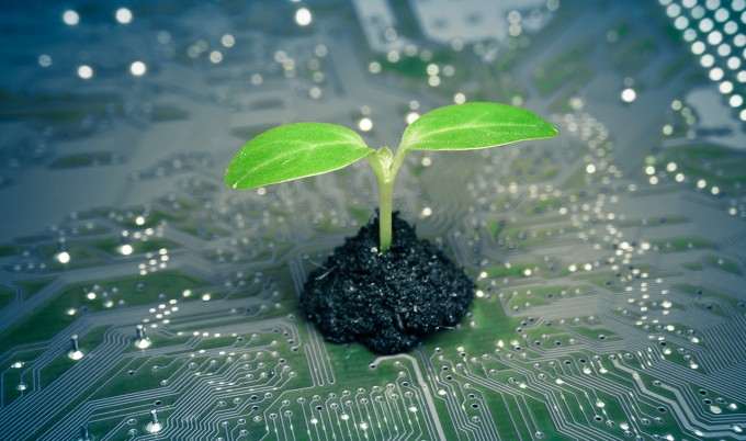 Little Steps that Can Help Your Company Be More Environmentally Responsible 11