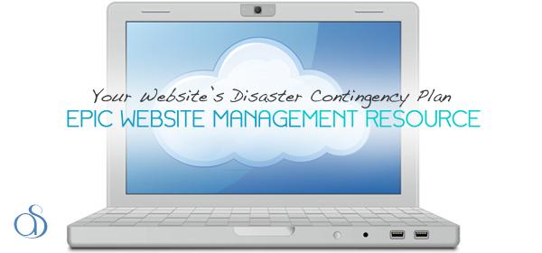Your Website's Disaster Contingency Plan