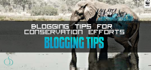 3 Blogging Tips for Conservation Efforts