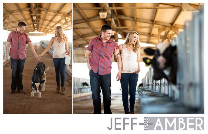 dairy-farm-engagement-session07