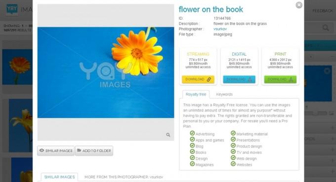free-stock-photography-yay-images