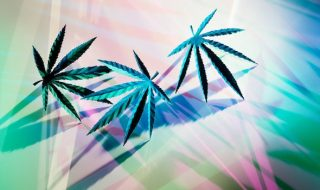 is-cannabis-good-or-bad-for-mental-health