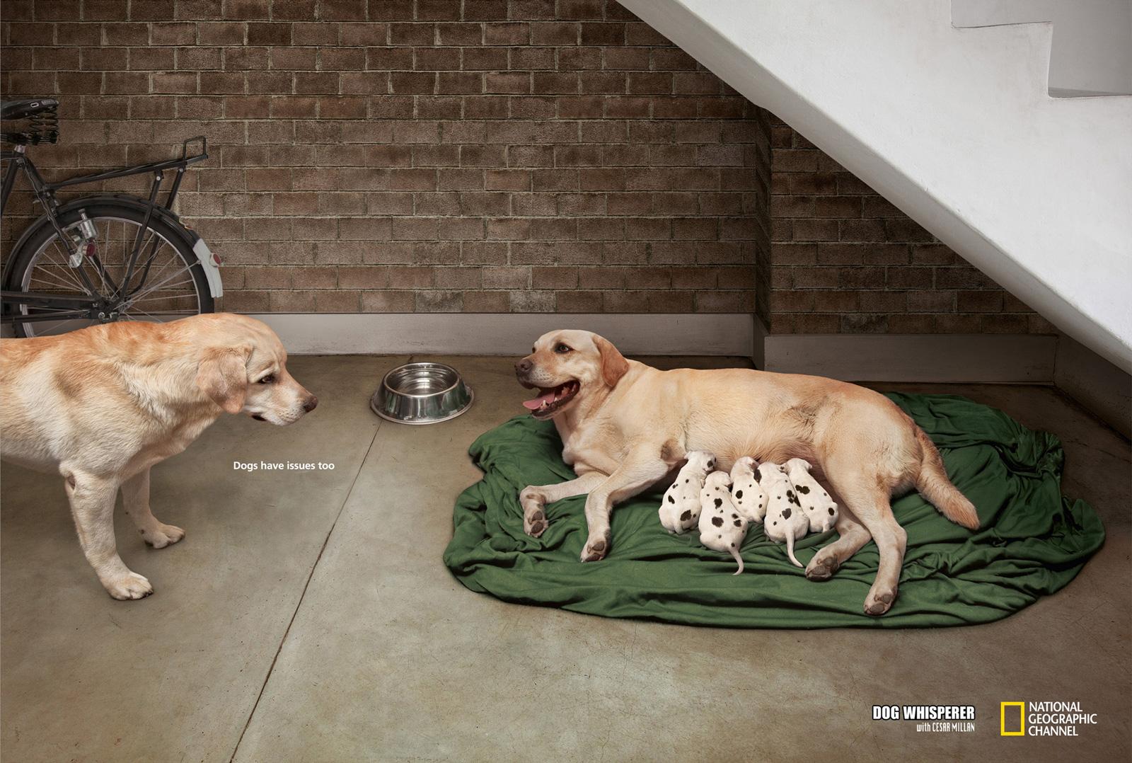 20 best print ads of 2012