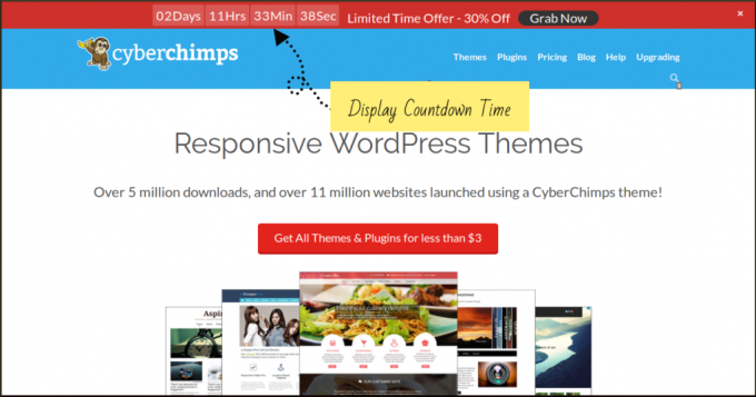 WordPress Themes Giveaway: Win a Free Membership to the CyberChimps Club for One Year