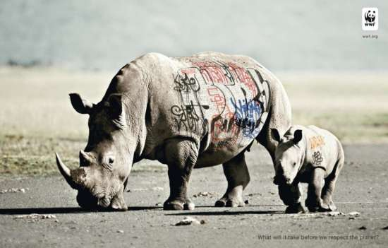 rhino-wwf-campaign-art