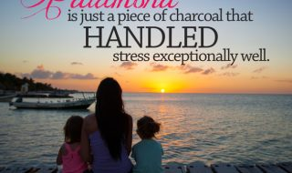 stress-meme-quote-family-photography