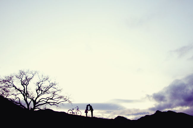 wedding-photography-engaged-tree-silhouette