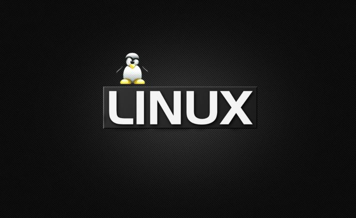 why-you-should-host-your-websites-with-linux-hosting