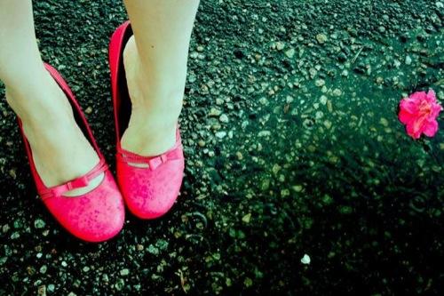 Pink Champ rain
