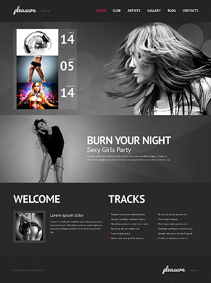Low Saturation Night Club WordPress Theme
