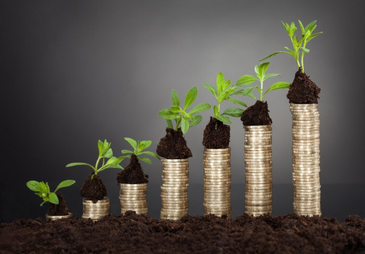 Growing a Business as a Frugal Entrepreneur 4