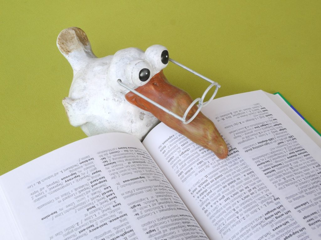 Read Book Education School Know Learn Study