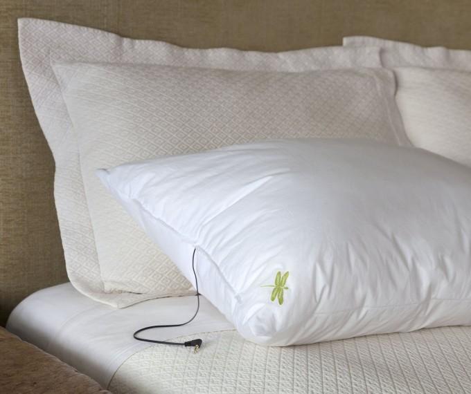 Sleep and Your Health 4