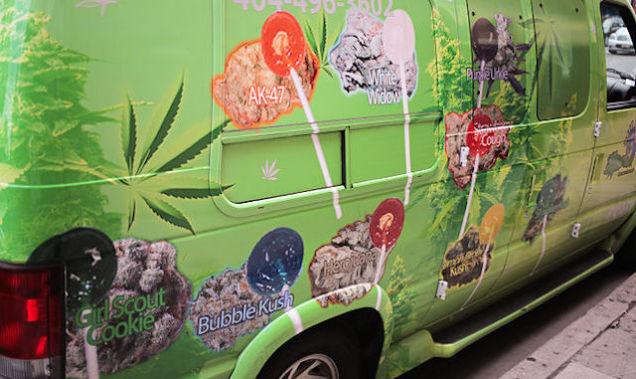 The Truth About Marijuana 8