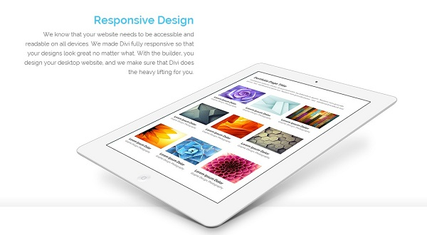 elegant-themes-wordpress-developer-giveaway-4