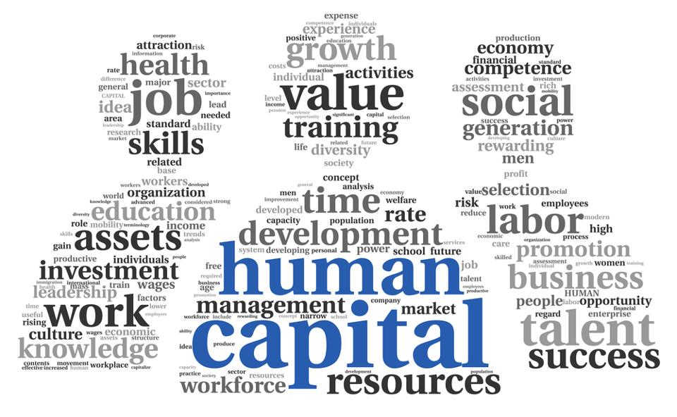 how-much-does-human-capital-cost-an-entrepreneur