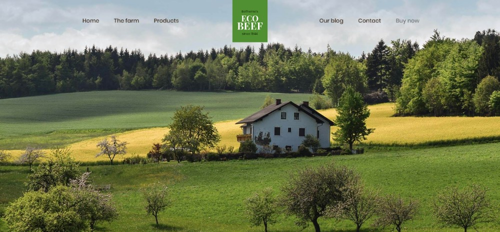 improve-design-website-pre-built-templates-work-faster (15)