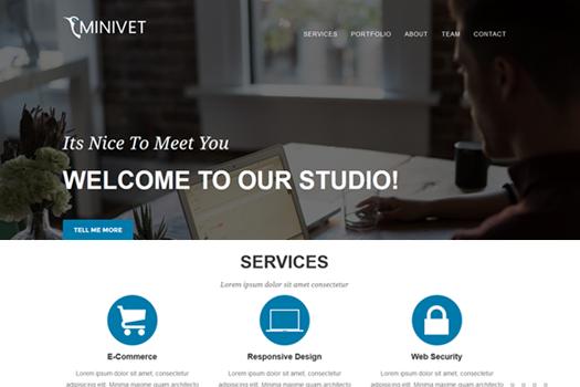 minivet_featured_img (1)