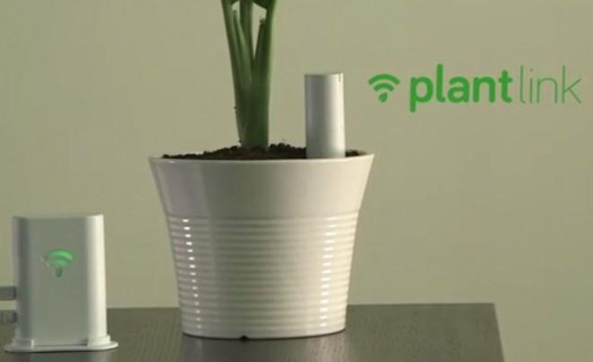 smart-office-solutions-plantlink