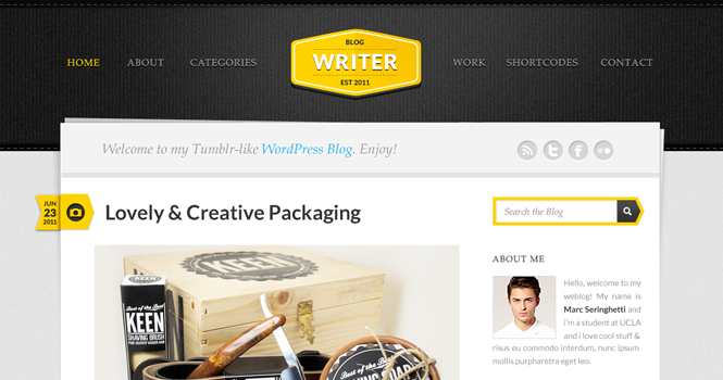 Personal WordPress Theme - Writer